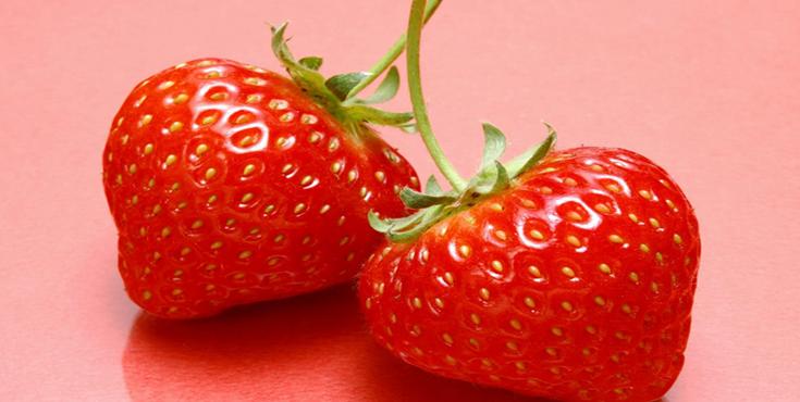大超草莓28元/斤