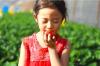 瑞信果蔬农庄草莓季体验活动