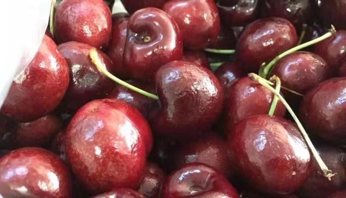 【车厘子】精品家庭水果大礼包