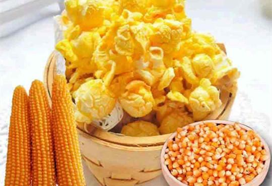 黄河玉米村玉米须茶+爆米花玉米